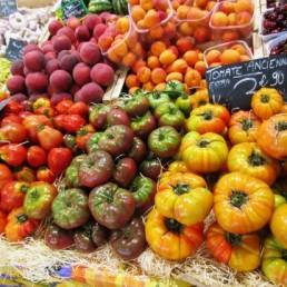 Viticulture & gastronomy 4